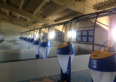 instalaciones eléctricas en granjas (12)