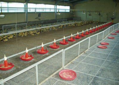 instalaciones eléctricas en granjas (25)